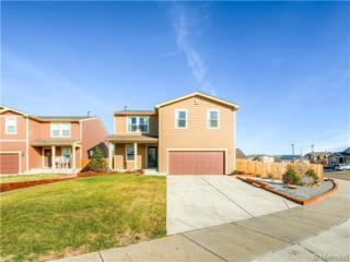 5382  Lewiston Street  , Denver, CO 80239 (#2975472) :: The Healey Group