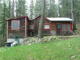 4921  Little Cub Creek Road  , Evergreen, CO 80439 (#3437907) :: Wisdom Real Estate