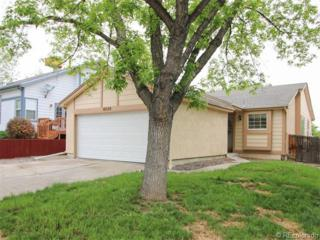 8030  Decatur Court  , Westminster, CO 80031 (#3590993) :: Colorado Home Finder Realty