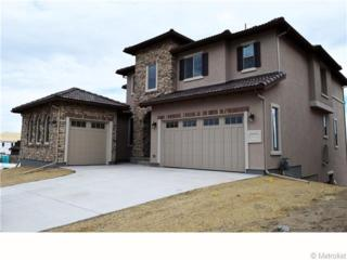 10702  Skydance Drive  , Highlands Ranch, CO 80126 (#5216276) :: The Peak Properties Group