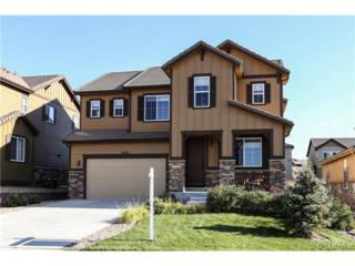10552  Sundial Rim Road  , Highlands Ranch, CO 80126 (#7779478) :: The Peak Properties Group