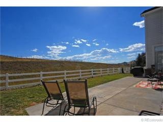 10414  Carriage Club Drive  , Lone Tree, CO 80124 (#1138937) :: The Peak Properties Group