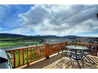 708  Cranmer Avenue  D, Fraser, CO 80442 (#2624666) :: Wisdom Real Estate