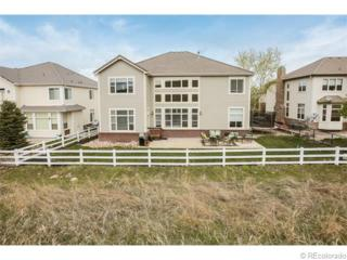 10414  Carriage Club Drive  , Lone Tree, CO 80124 (#4174180) :: The Peak Properties Group