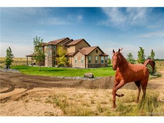15691  Almstead Street  , Hudson, CO 80642 (#8701644) :: The Healey Group