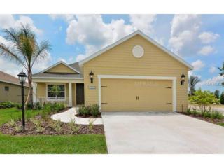 12132  Whisper Lake Drive  , Bradenton, FL 34212 (MLS #A4102289) :: Team Pepka
