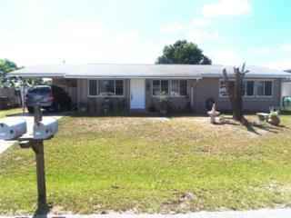 2543  Ivanhoe Street  , Port Charlotte, FL 33952 (MLS #A4104167) :: Team Pepka