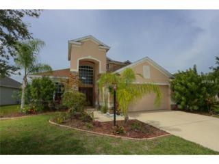 6376  Golden Eye Glen  , Lakewood Ranch, FL 34202 (MLS #A4105171) :: Team Pepka