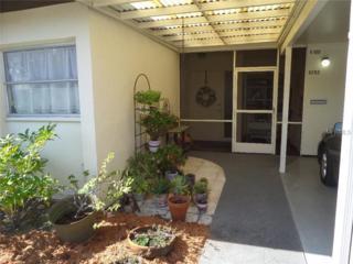 6252  Green View Circle  100, Sarasota, FL 34231 (MLS #A4108794) :: Team Pepka