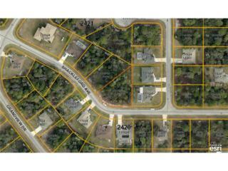 Shackleford Avenue  , North Port, FL 34288 (MLS #A4112565) :: Medway Realty