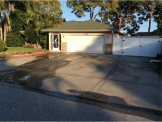 1341  Ringtail Road  , Venice, FL 34293 (MLS #A4115723) :: Medway Realty