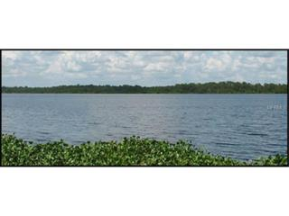 25916  State Road 64 E , Myakka City, FL 34251 (MLS #A4116008) :: Exit Realty Lakeland