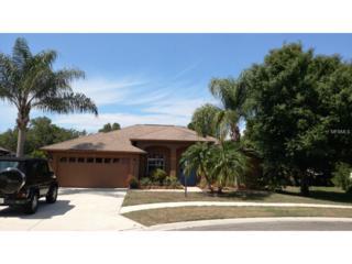 4816  Wood Pointe Way  , Sarasota, FL 34233 (MLS #A4122018) :: Premium Properties Real Estate Services
