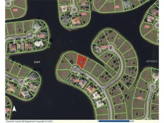 17138  Anthem Lane  , Punta Gorda, FL 33955 (MLS #C7204008) :: Team Pepka