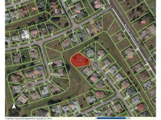 1337  Ultramarine Lane  , Punta Gorda, FL 33983 (MLS #C7205899) :: Premium Properties Real Estate Services