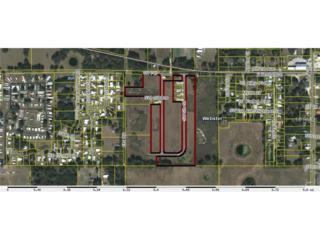 N/A  , Webster, FL 33597 (MLS #G4805886) :: Premium Properties Real Estate Services