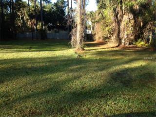 Lisa  , Astor, FL 32102 (MLS #G4806852) :: Premium Properties Real Estate Services