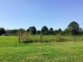 State Road 33  , Clermont, FL 34714 (MLS #G4810555) :: KELLER WILLIAMS CLASSIC III