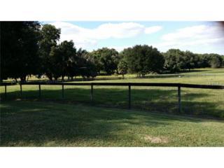 SE 53 Lane  , Center Hill, FL 33514 (MLS #G4810615) :: KELLER WILLIAMS CLASSIC III