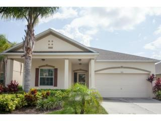 226  Tres Reyes Lane  , Groveland, FL 34736 (MLS #G4811336) :: KELLER WILLIAMS CLASSIC III