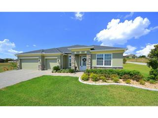 11249  Little Nellie Drive  , Clermont, FL 34711 (MLS #G4812757) :: KELLER WILLIAMS CLASSIC III