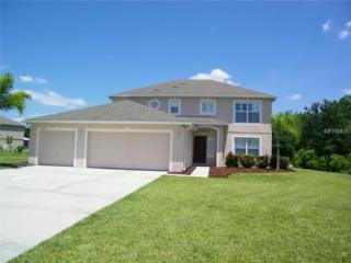 17109  Dillard Court  , Lutz, FL 33559 (MLS #H2200506) :: Premium Properties Real Estate Services