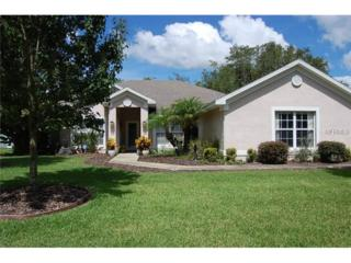 1829  Sherwood Lakes Boulevard  , Lakeland, FL 33809 (MLS #L4700518) :: Infinity Real Estate Group