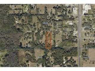0  Oak Drive W , Lakeland, FL 33810 (MLS #L4705258) :: Exit Realty Lakeland