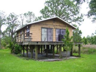 7880  Lake Buffum Road S , Fort Meade, FL 33841 (MLS #L4706358) :: Exit Realty Lakeland