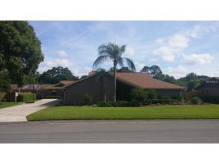 4951  Stonecrest Drive  , Lakeland, FL 33813 (MLS #L4706517) :: Gate Arty & the Group - Keller Williams Realty