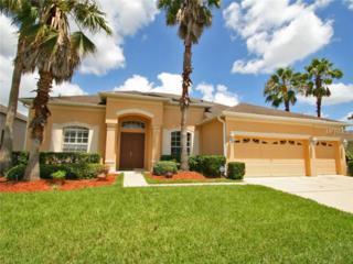 4949  Brightmour Circle  , Orlando, FL 32837 (MLS #O5316167) :: Team Pepka