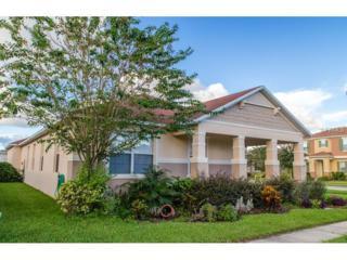13763  Canopus Drive  , Orlando, FL 32828 (MLS #O5318571) :: RE/MAX Innovation