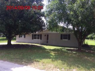 37249  Myrtle Drive  , Umatilla, FL 32784 (MLS #O5319365) :: RE/MAX Innovation