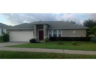 1039  Sandhill Street  , Groveland, FL 34736 (MLS #O5320139) :: Infinity Real Estate Group