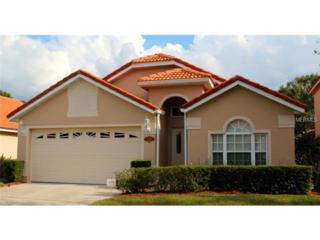 5389  Watervista Drive  , Orlando, FL 32821 (MLS #O5327815) :: Orlando Property Group