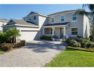 8019  Key West Dove Street  , Winter Garden, FL 34787 (MLS #O5328294) :: Orlando Property Group