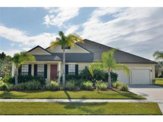 3300  Sweet Jaffa Drive  , Kissimmee, FL 34746 (MLS #O5330638) :: Exit Realty Central