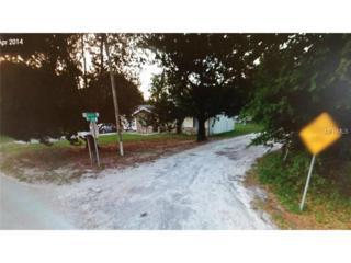 1119  Jackson Street  , Apopka, FL 32703 (MLS #O5332128) :: Premium Properties Real Estate Services