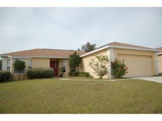 1411  Merrimack Lane  , Davenport, FL 33837 (MLS #O5332210) :: Exit Realty Lakeland