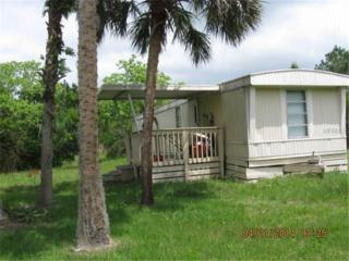 932  Stafford Trail  , Geneva, FL 32732 (MLS #O5350312) :: Premium Properties Real Estate Services