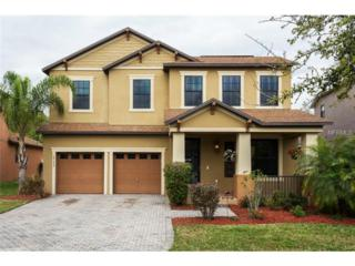 10177  Moss Rose Way  , Orlando, FL 32832 (MLS #O5350368) :: Premium Properties Real Estate Services