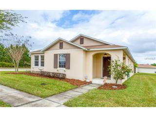 13805  Tea Rose Drive  , Orlando, FL 32828 (MLS #O5350765) :: RE/MAX Innovation