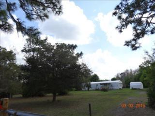4520  Deer Run Road  , Saint Cloud, FL 34772 (MLS #O5351074) :: RE/MAX Innovation