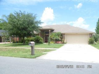 20557  Nettleton Street  , Orlando, FL 32833 (MLS #O5361540) :: Premium Properties Real Estate Services