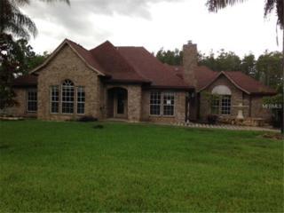 19242  Moorgate Street  , Orlando, FL 32833 (MLS #S4803300) :: Orlando Property Group