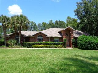 12105  Gray Birch Circle  , Orlando, FL 32832 (MLS #S4803332) :: Orlando Property Group