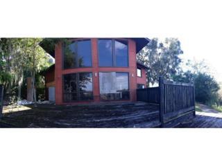 2420 S Crystal Lake Drive  , Lakeland, FL 33801 (MLS #S4807040) :: Premium Properties Real Estate Services