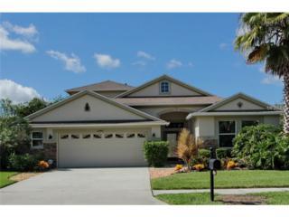 27416  Edenfield Drive  , Wesley Chapel, FL 33544 (MLS #T2712232) :: The Duncan Duo & Associates