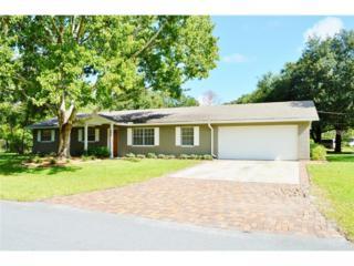 402  Layne Place  , Lutz, FL 33549 (MLS #T2714048) :: The Duncan Duo & Associates