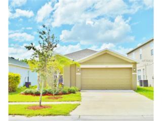 1133  Seminole Sky Drive  , Ruskin, FL 33570 (MLS #T2716674) :: The Duncan Duo & Associates